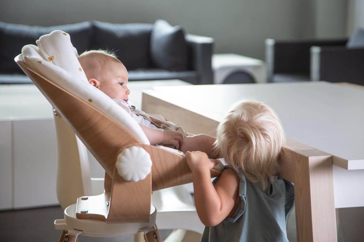 Transat pour chaise haute Evolu Newborn Seat Childhome 6